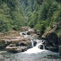 02 Untitled (Brice Creek, Oregon n.1403 stream)