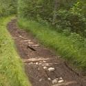 22 Minnesota Trail