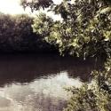 04 Lagoon (4:15 pm)