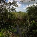 01 Lagoon (lookout)