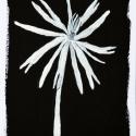 23 Black-White Organic Form 6