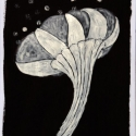 27 Black-White Organic Form 10