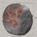 13 ceramic_14apr2007-013
