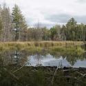 Minnesota Boundary Waters / Iron Range 30
