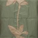 12 Flag (silk)