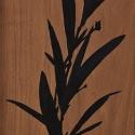 19 Untitled (oleander #1)