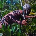 04 Mangrove, Mud, Mystery (series)
