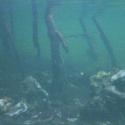 06 underwater-mia01