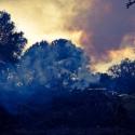 29 Fire (slow burn)