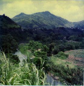 puertorico-03
