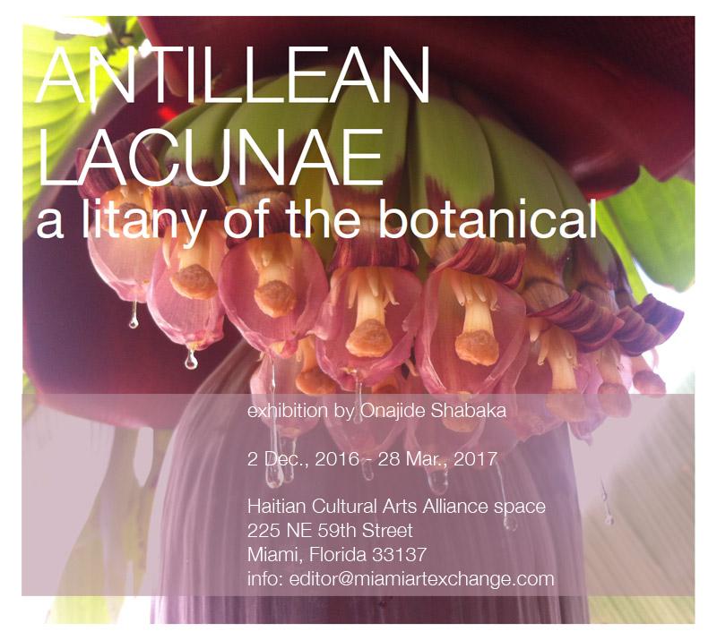 antillean_lacunae_web